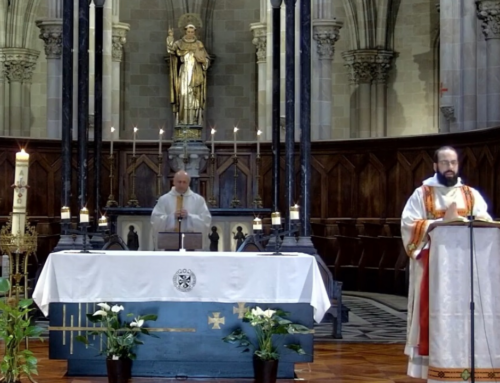 La Basílica de San Vicente Ferrer acoge una eucaristía para celebrar la fiesta del titular de la Facultad de Teología de Valencia
