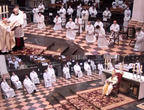 Un profesor y trece alumnos o antiguos alumnos de la Facultad, nuevos candidatos al diaconado permanente